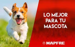 Seguro Mascotas Mapfre Veterinario Tenerife Taco edited
